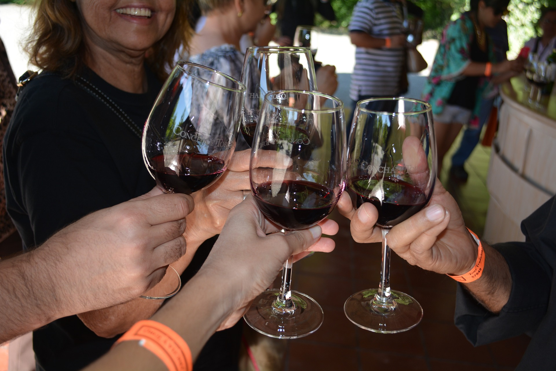 winery-3716542_1920